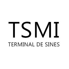 terminal-de-sines